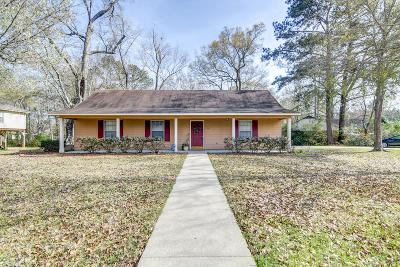 Hattiesburg Single Family Home For Sale: 407 Sam Rayburn Dr.