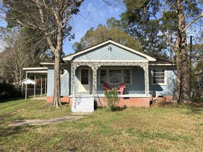 Hattiesburg Single Family Home For Sale: 207 S 19th Ave.