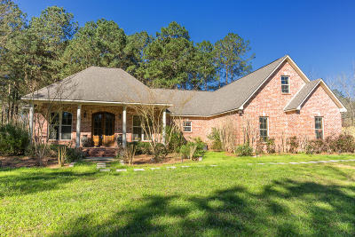 Seminary, Sumrall Single Family Home For Sale: 89 Old Salt Road