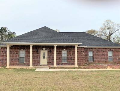Sumrall Single Family Home For Sale: 195 Oral Church