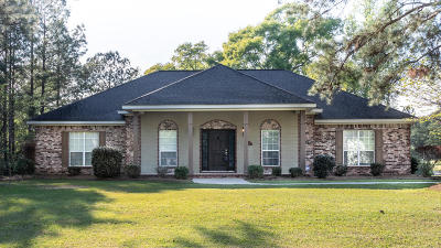Sumrall Single Family Home For Sale: 3 Winding Brook Dr.