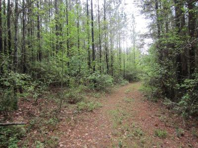 Seminary, Sumrall Residential Lots & Land For Sale: Nobles (255 +/- Ac) Rd.