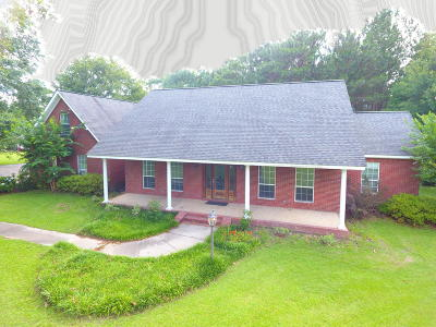 Purvis, Sumrall Single Family Home For Sale: 217 Coal Town Rd.