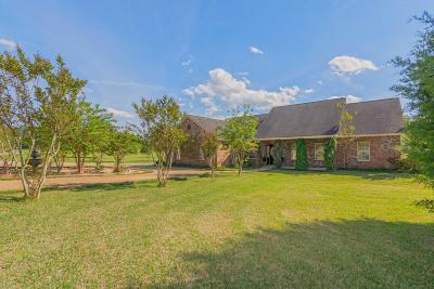 Seminary, Sumrall Single Family Home For Sale: 563 Scruggs Rd.