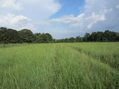 Seminary, Sumrall Residential Lots & Land For Sale: Hwy 42 (30 +/- Ac)