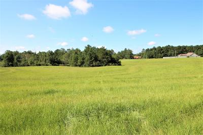Sumrall Residential Lots & Land For Sale: Ms 42