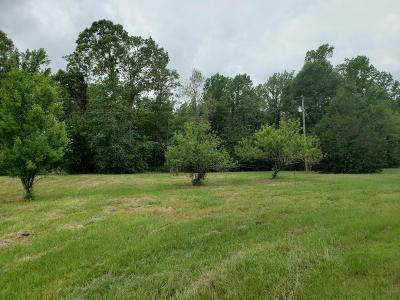 Sumrall Residential Lots & Land For Sale: 563 Lot1 Scruggs Rd.