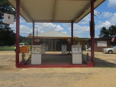Covington County Commercial For Sale: 2543 Hwy 532