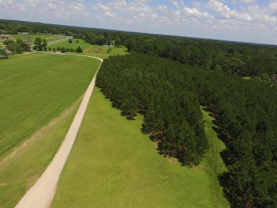 Sumrall Residential Lots & Land For Sale: Big Bird Ln.