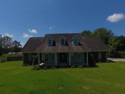 Seminary Single Family Home For Sale: 272 Ms-598