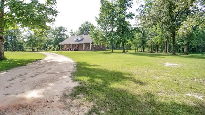 Sumrall Single Family Home For Sale: 414 Farve Rd.