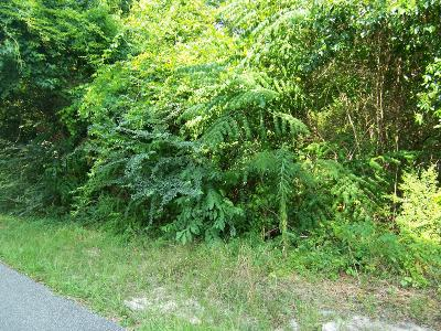 Residential Lots & Land For Sale: E Delta Dr.