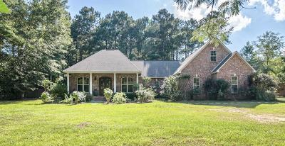 Sumrall Single Family Home For Sale: 89 Old Salt Rd.
