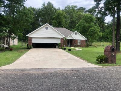 Hattiesburg MS Single Family Home For Sale: $110,000