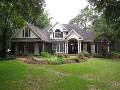 Big Bay Lake Single Family Home For Sale: 25 E Bay Dr.