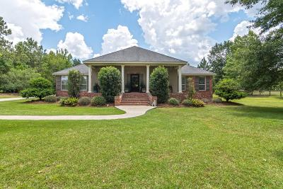 Hattiesburg Single Family Home For Sale: 275 King Rd.