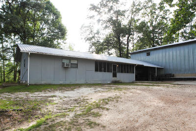 Sumrall Single Family Home For Sale: 345 & 355 Big Hill