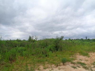 Jefferson Davis County Residential Lots & Land For Sale: Hartzog-Magee