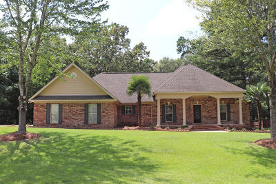 Hattiesburg Single Family Home For Sale: 163 Red Roan Rd.