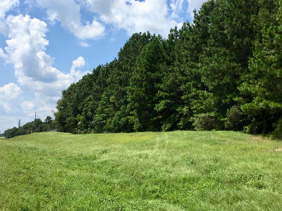 Hattiesburg Residential Lots & Land For Sale: 007 Evelyn Gandy Parkway