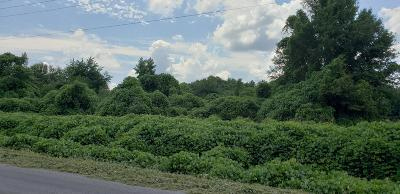 Hattiesburg Residential Lots & Land For Sale: Eatonville Rd.