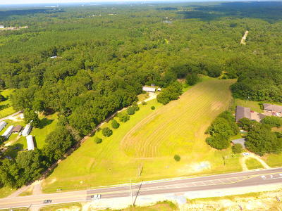 Commercial For Sale: 4684 Old Hwy 11