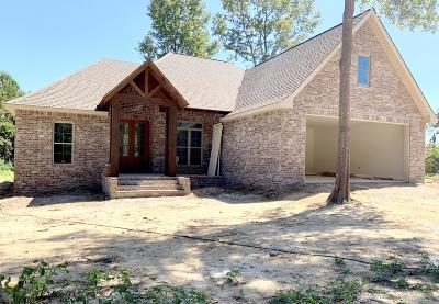 Sumrall Single Family Home For Sale: 463 Military Rd.