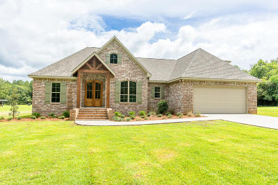 Sumrall Single Family Home For Sale: 224 Hickory Grove Church Rd.