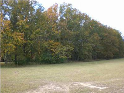 Richland Residential Lots & Land For Sale: 281 W Harper St