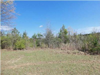 Carthage MS Residential Lots & Land For Sale: $7,000