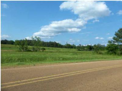 Leake County Residential Lots & Land Contingent: 1 Hwy. 25 Hwy
