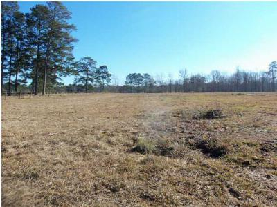 Scott County Residential Lots & Land For Sale: 219 Hwy 35 South Hwy
