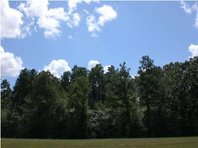 Richland Residential Lots & Land For Sale: 283 W Harper St
