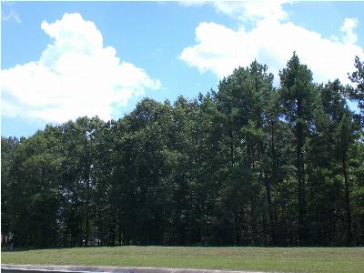 Richland Residential Lots & Land For Sale: 289 W Harper St