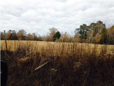 Residential Lots & Land For Sale: 1529 Rossie Coats Rd