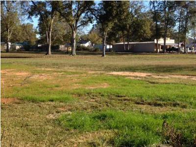 Leake County Residential Lots & Land For Sale: Hwy 16 East