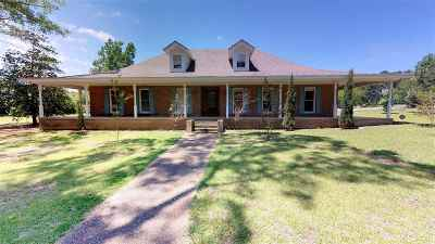 Simpson County Single Family Home For Sale: 399 Old Magee Rd
