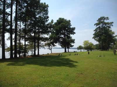 Madison Residential Lots & Land For Sale: Diberville Ln