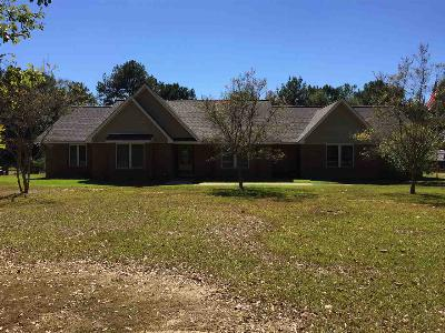 Mendenhall Single Family Home Contingent/Pending: 2382 Hwy 541 Hwy