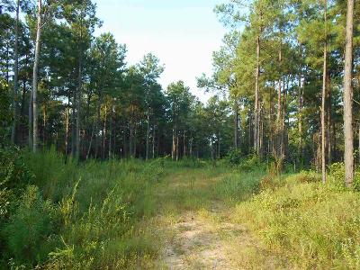 Oxford MS Residential Lots & Land For Sale: $1,553,500
