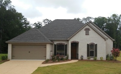 Brandon Single Family Home Contingent: 408 West Cowan Creek Cv