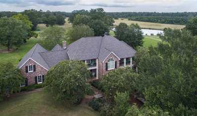 Clinton Single Family Home For Sale: 1790 Kickapoo Rd