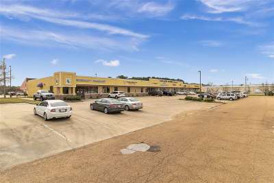 Flowood Rental For Rent: 1000 N Lakeland Sq