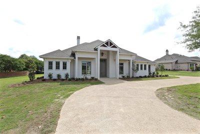 Ridgeland Single Family Home For Sale: 237 Richardson Rd