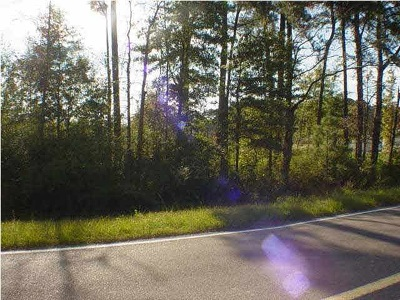 Residential Lots & Land For Sale: Hwy 49