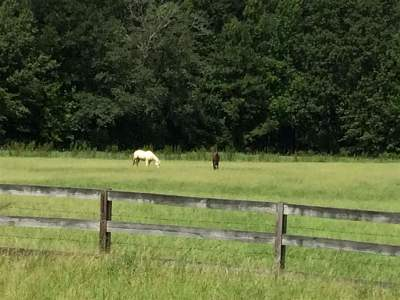Madison County Residential Lots & Land For Sale: 2 Highland Hills Ln