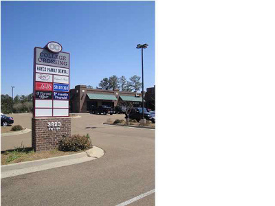 Pearl Rental For Rent: 3823 Hwy 80 East