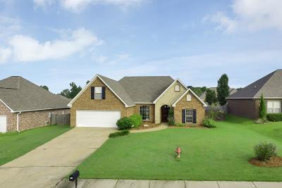 Florence, Richland Single Family Home For Sale: 227 Copper Ridge Way