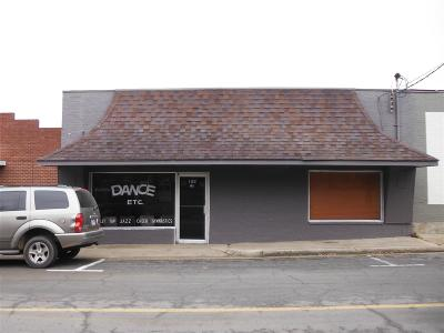Commercial For Sale: 333 Smith St