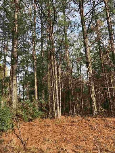 Mize Residential Lots & Land For Sale: SCR 83
